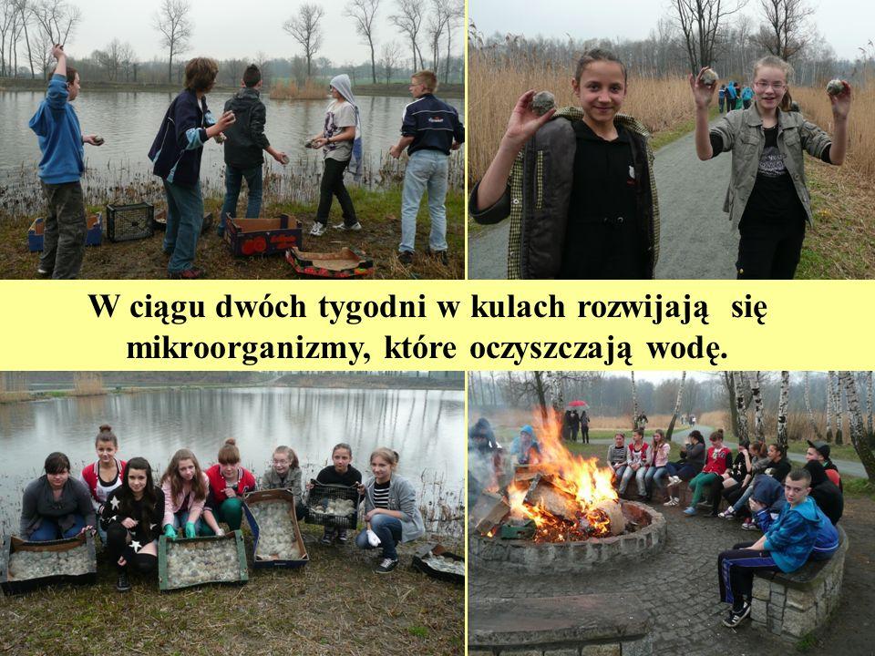 W grudniu odbyło się podsumowanie XXI Wojewódzkiego Konkursu Na najlepiej prowadzoną edukację dla zrównoważonego rozwoju w placówkach oświatowo- wychowawczych województwa śląskiego w roku szkolnym 2011/2012.