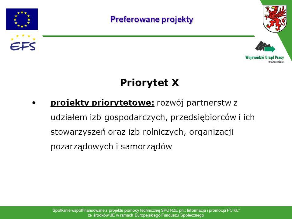 Spotkanie współfinansowane z projektu pomocy technicznej SPO RZL pn.: Informacja i promocja PO KL ze środków UE w ramach Europejskiego Funduszu Społec