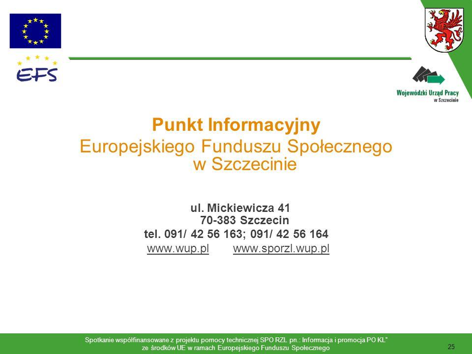 Spotkanie współfinansowane z projektu pomocy technicznej SPO RZL pn.: Informacja i promocja PO KL ze środków UE w ramach Europejskiego Funduszu Społecznego 26 Obsługa klientów zainteresowanych finansowaniem projektów ze środków EFS; Organizacja szkoleń, spotkań, konferencji, wystaw; Udostępnianie dokumentacji konkursowej niezbędnej do przygotowania wniosku o dofinansowanie realizacji projektu: Poradnik dla beneficjentów, Uzupełnienie Programu, Ramowy Plan Realizacji Działań, Dokumentacja konkursowa danego działania, Formularz wniosku o dofinansowanie realizacji projektu, Instrukcja wypełniania wniosku; Zadania realizowane przez Punkt Informacyjny