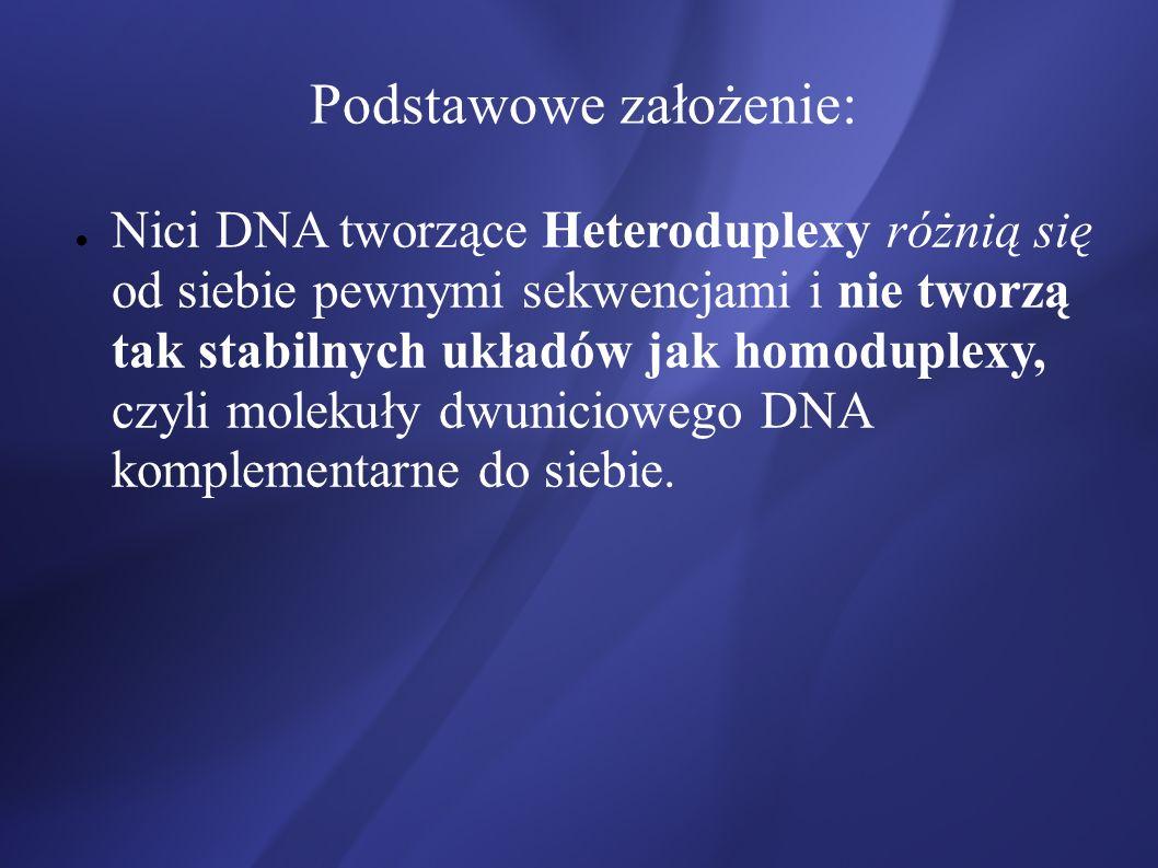 Podstawowe założenie: Nici DNA tworzące Heteroduplexy różnią się od siebie pewnymi sekwencjami i nie tworzą tak stabilnych układów jak homoduplexy, cz