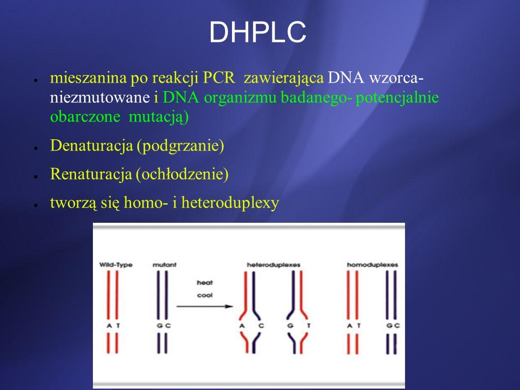 DHPLC mieszanina po reakcji PCR zawierająca DNA wzorca- niezmutowane i DNA organizmu badanego- potencjalnie obarczone mutacją) Denaturacja (podgrzanie