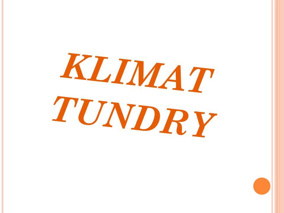 KLIMAT TUNDRY