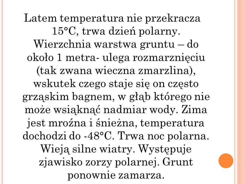 Latem temperatura nie przekracza 15°C, trwa dzień polarny. Wierzchnia warstwa gruntu – do około 1 metra- ulega rozmarznięciu (tak zwana wieczna zmarzl