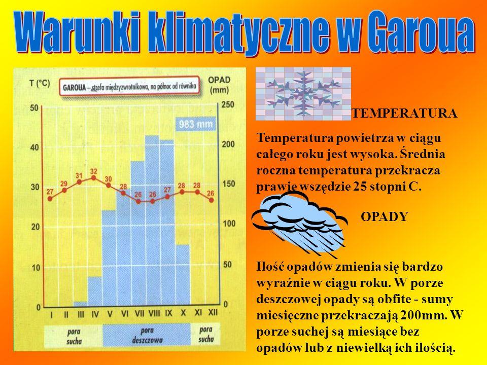 TEMPERATURA Temperatura powietrza w ciągu całego roku jest wysoka. Średnia roczna temperatura przekracza prawie wszędzie 25 stopni C. OPADY Ilość opad