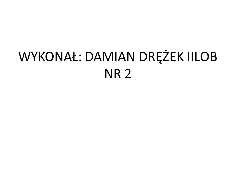 WYKONAŁ: DAMIAN DRĘŻEK IILOB NR 2