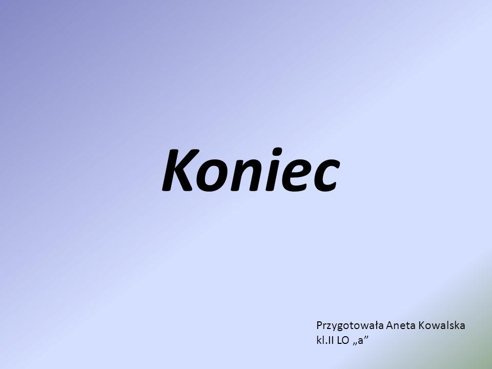 Koniec Przygotowała Aneta Kowalska kl.II LO a