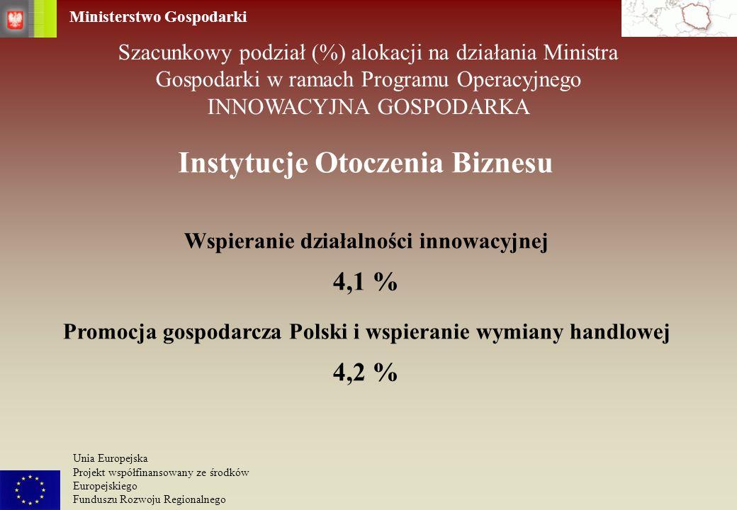 Ministerstwo Gospodarki Unia Europejska Projekt współfinansowany ze środków Europejskiego Funduszu Rozwoju Regionalnego Instytucje Otoczenia Biznesu P