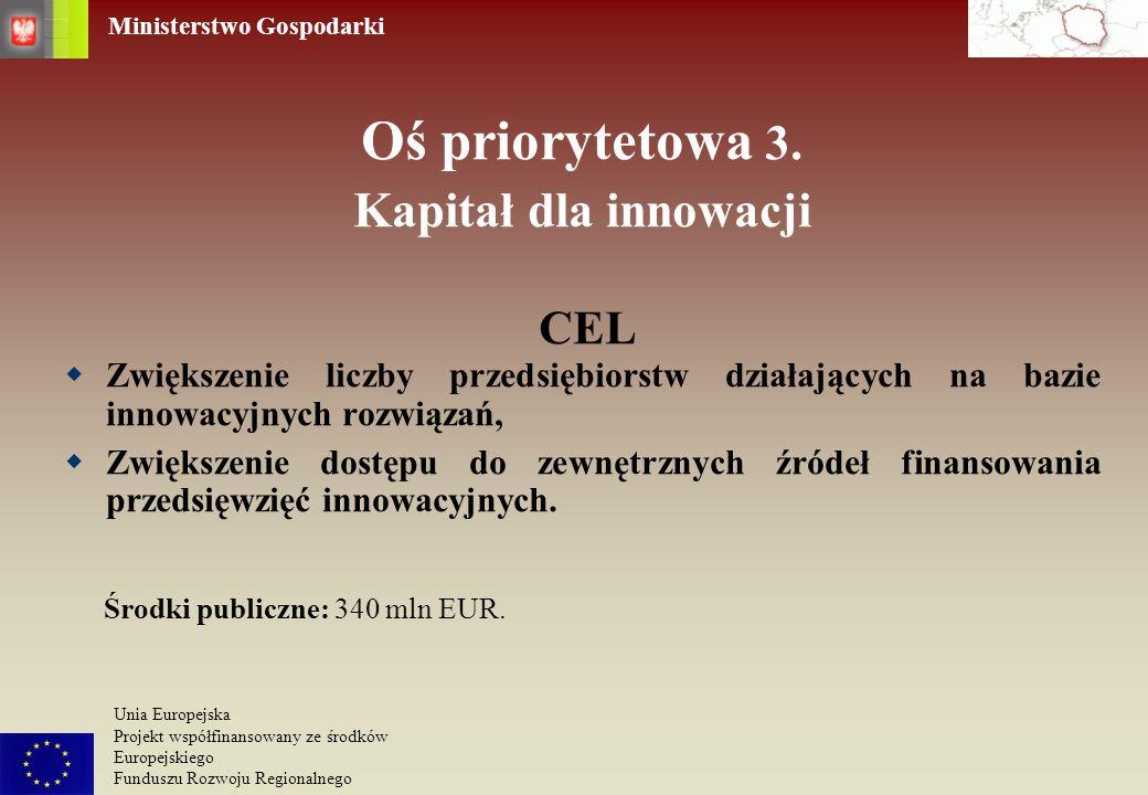 Ministerstwo Gospodarki Unia Europejska Projekt współfinansowany ze środków Europejskiego Funduszu Rozwoju Regionalnego Oś priorytetowa 3. Kapitał dla