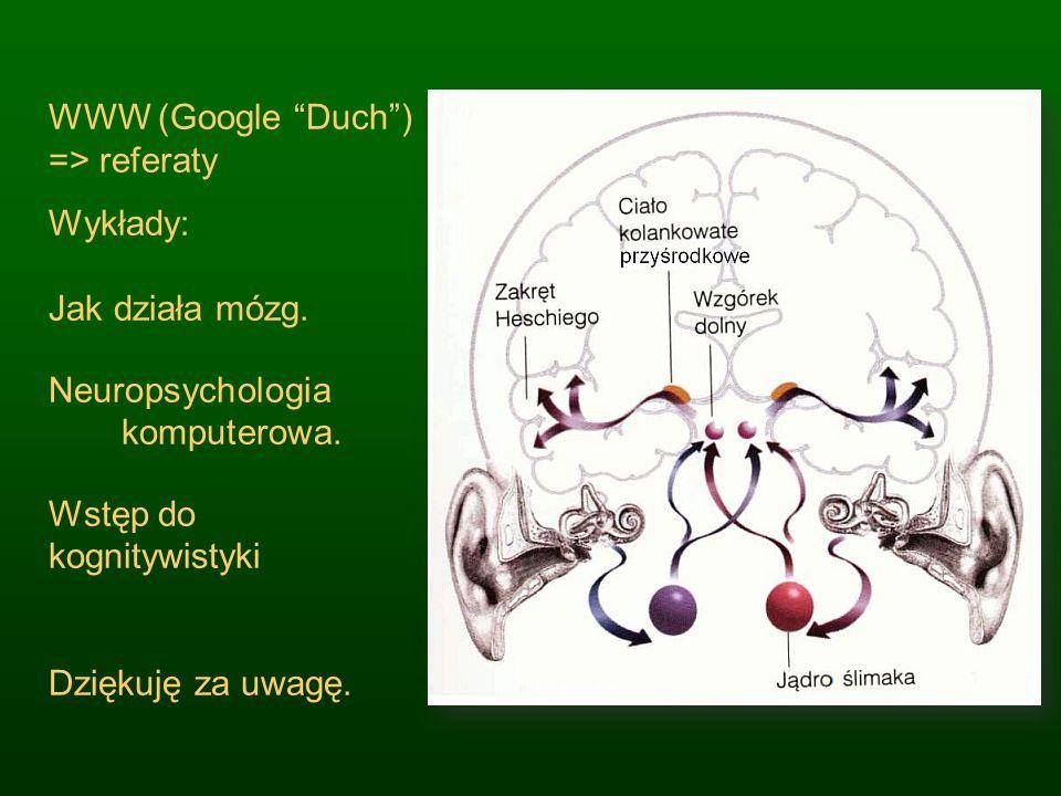 WWW (Google Duch) => referaty Wykłady: Jak działa mózg. Neuropsychologia komputerowa. Wstęp do kognitywistyki Dziękuję za uwagę.