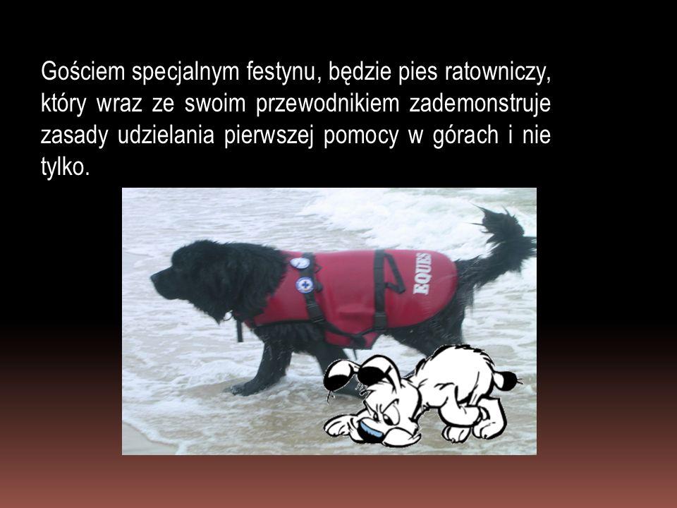 Gościem specjalnym festynu, będzie pies ratowniczy, który wraz ze swoim przewodnikiem zademonstruje zasady udzielania pierwszej pomocy w górach i nie