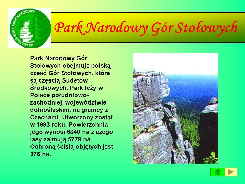 Gorczański Park Narodowy Gorczański Park Narodowy obejmuje centralną i północno- wschodnią część pasma Gorców, z najwyższym szczytem Jaworzyną Kamieni