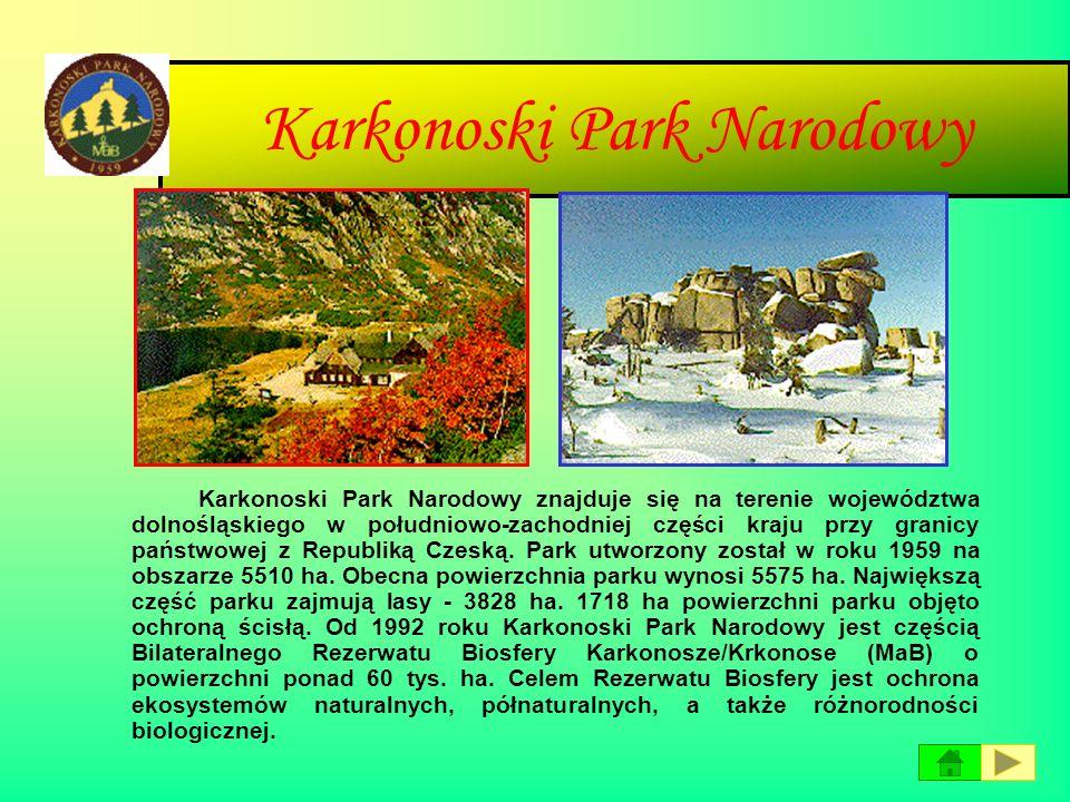 Kampinowski Park Narodowy Kampinoski Park Narodowy leży w województwie mazowieckim, na północny-zachód od Warszawy, z którą bezpośrednio sąsiaduje. Ob