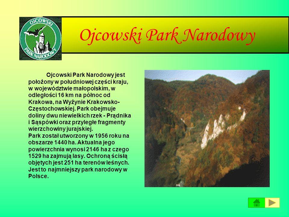 Narwiański Park Narodowy Narwiański Park Narodowy leży w północno-wschodniej części Polski w województwie podlaskim. Powierzchnia całkowita parku utwo