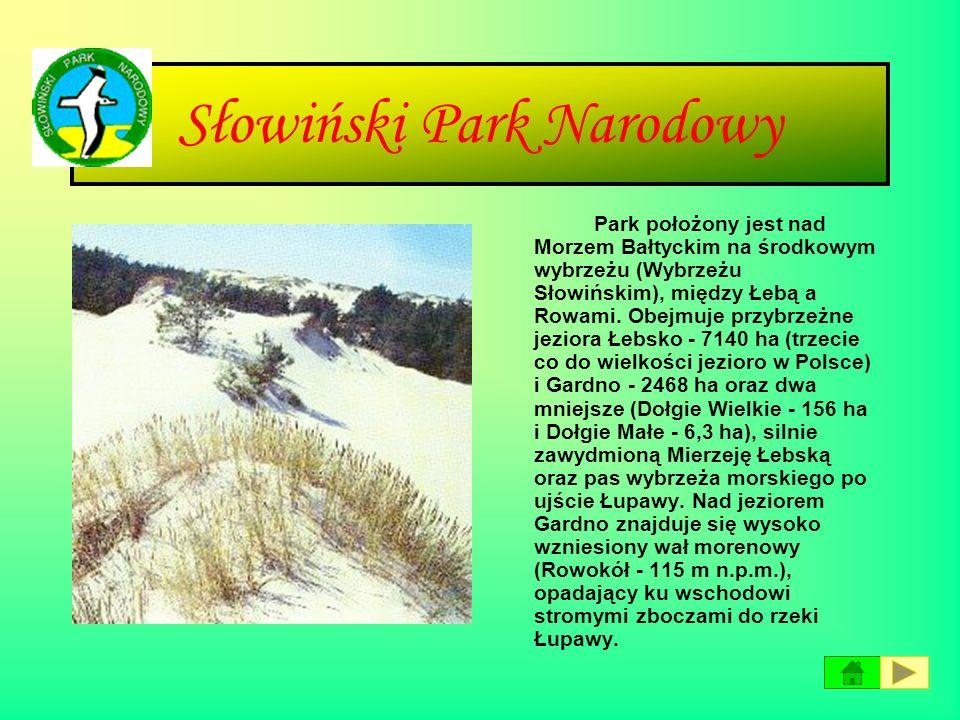 Roztoczański Park Narodowy Roztoczański Park Narodowy leży w środkowo-wschodniej części kraju, w województwie lubelskim. Obejmuje najcenniejsze przyro