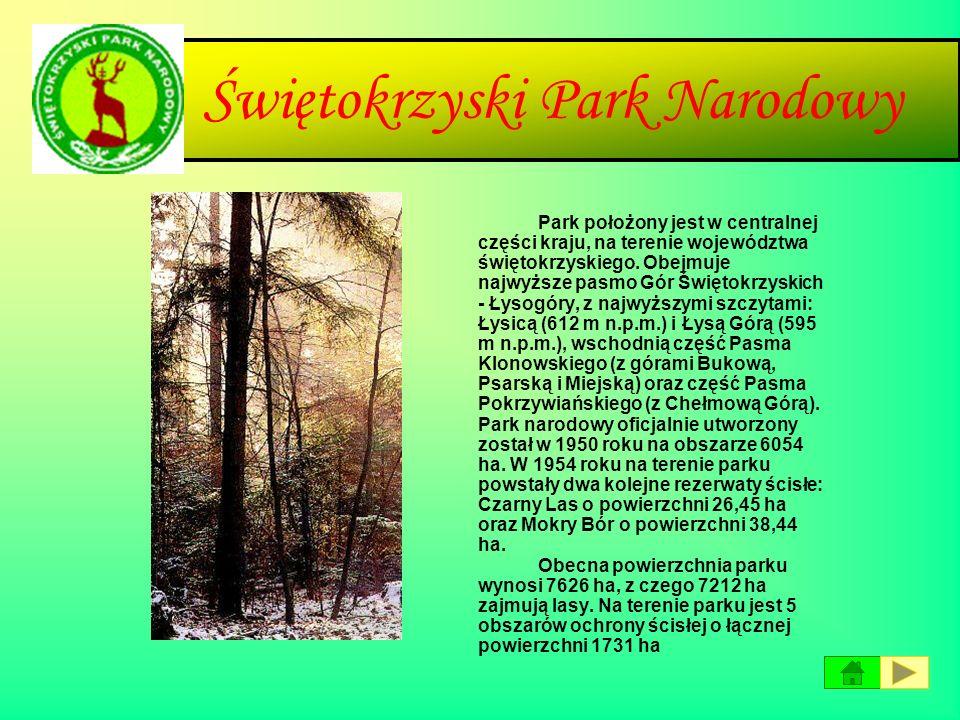 Słowiński Park Narodowy Park położony jest nad Morzem Bałtyckim na środkowym wybrzeżu (Wybrzeżu Słowińskim), między Łebą a Rowami. Obejmuje przybrzeżn