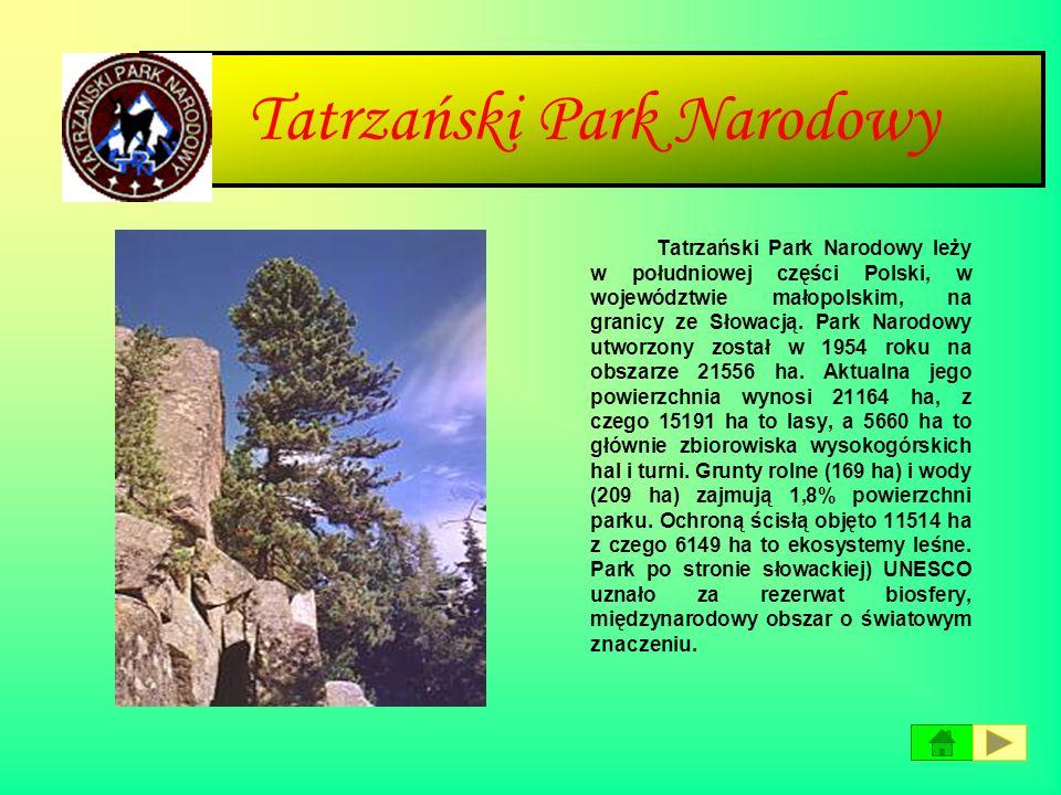 Świętokrzyski Park Narodowy Park położony jest w centralnej części kraju, na terenie województwa świętokrzyskiego. Obejmuje najwyższe pasmo Gór Święto