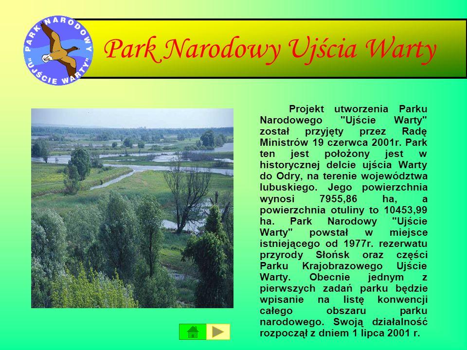 Tatrzański Park Narodowy Tatrzański Park Narodowy leży w południowej części Polski, w województwie małopolskim, na granicy ze Słowacją. Park Narodowy