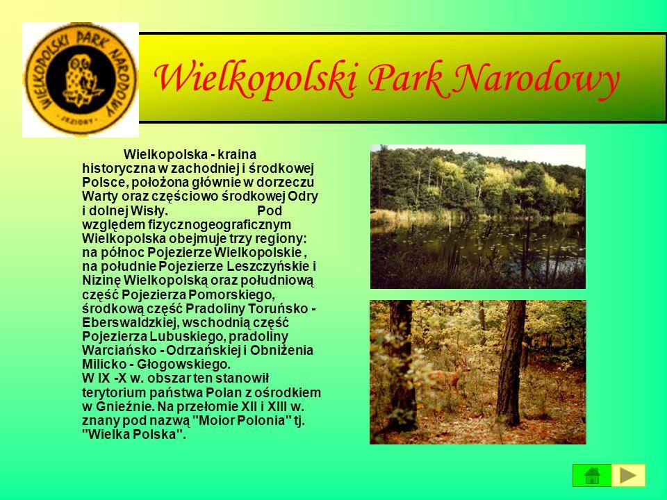 Park Narodowy Ujścia Warty Projekt utworzenia Parku Narodowego