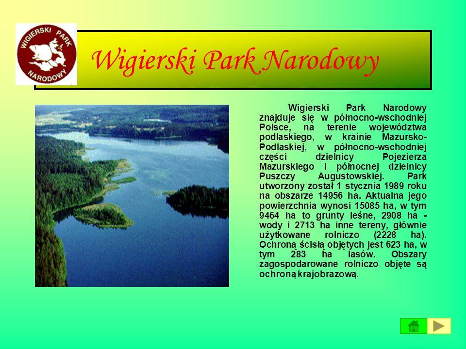 Wielkopolski Park Narodowy Wielkopolska - kraina historyczna w zachodniej i środkowej Polsce, położona głównie w dorzeczu Warty oraz częściowo środkow
