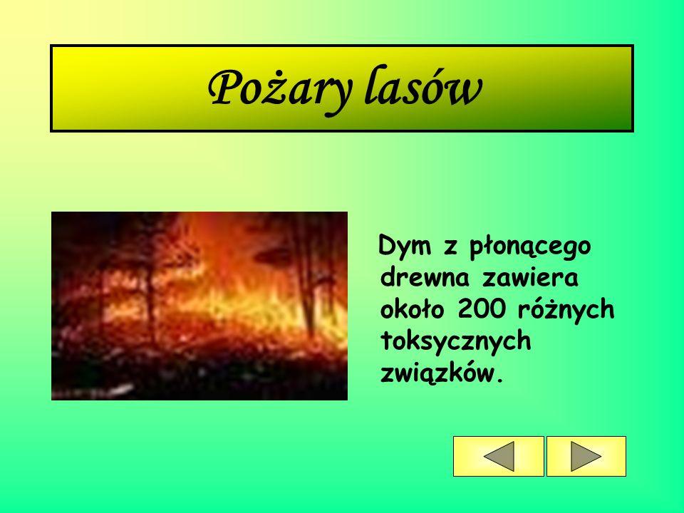 Pożary lasów Dym z płonącego drewna zawiera około 200 różnych toksycznych związków.