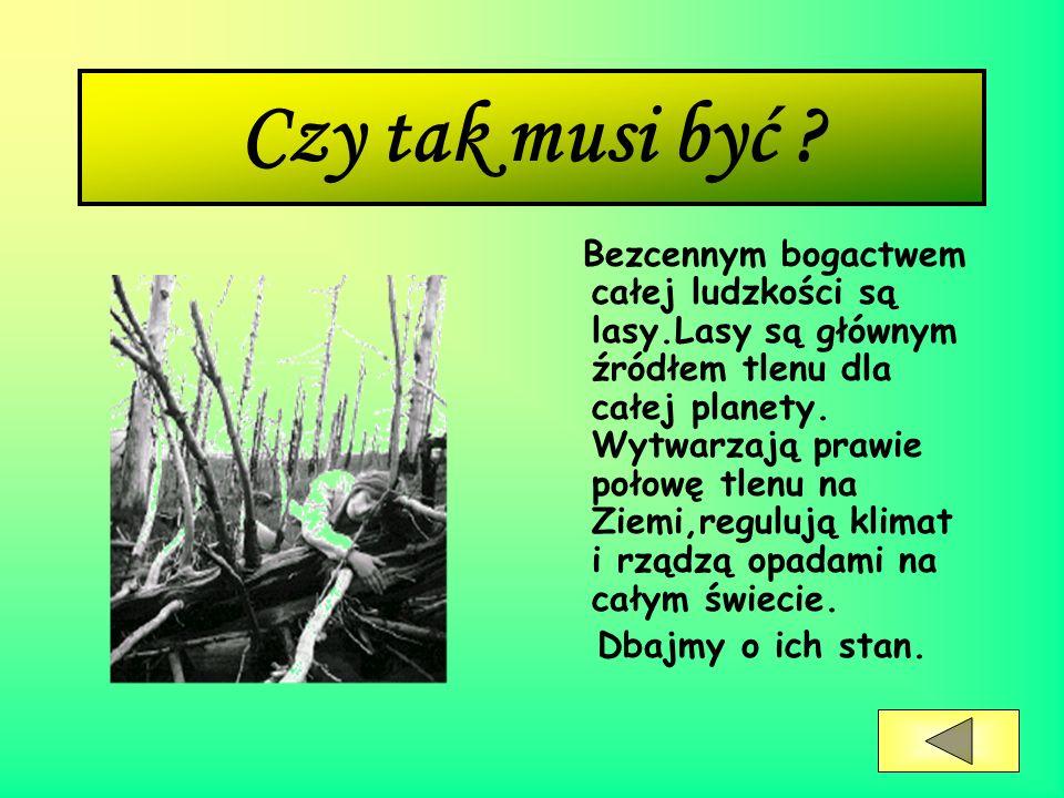 Narwiański Park Narodowy Narwiański Park Narodowy leży w północno-wschodniej części Polski w województwie podlaskim.
