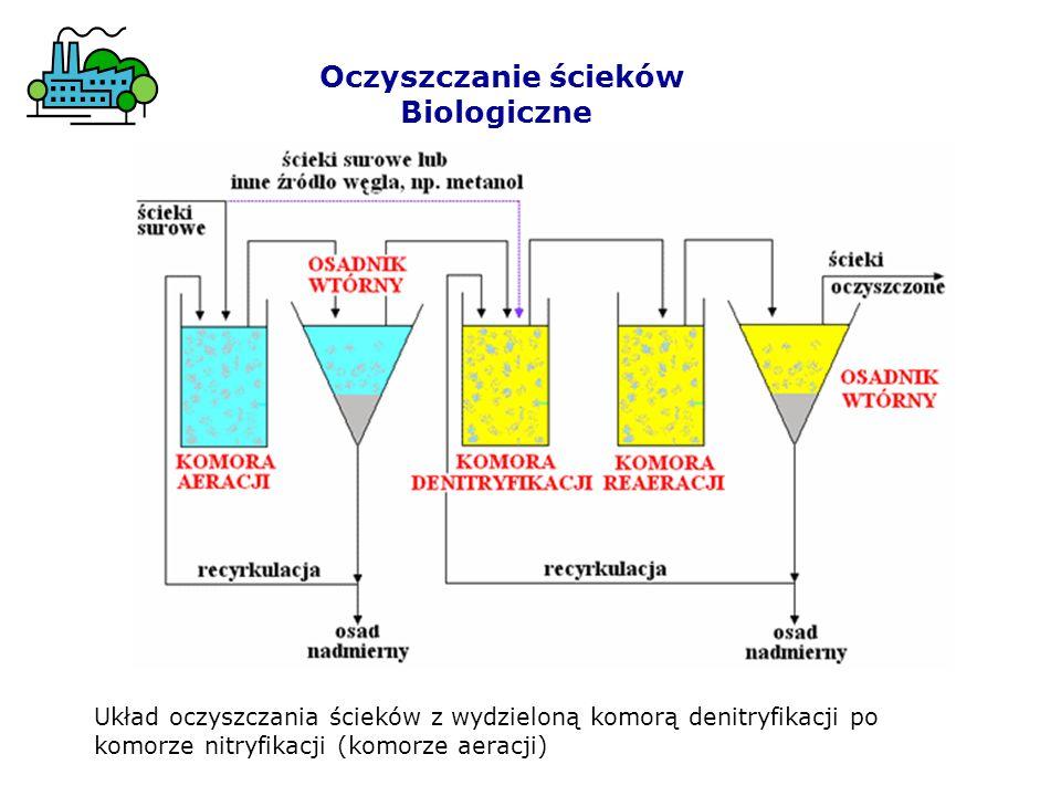 Oczyszczanie ścieków Biologiczne Układ oczyszczania ścieków z wydzieloną komorą denitryfikacji po komorze nitryfikacji (komorze aeracji)