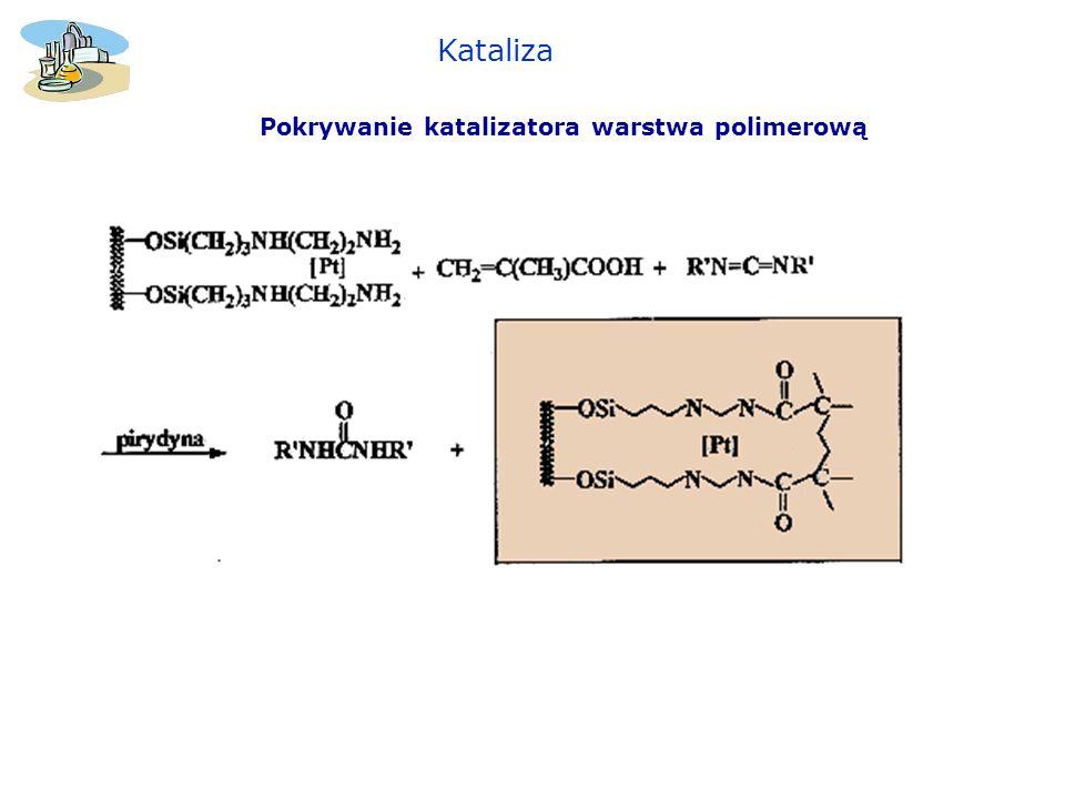 Pokrywanie katalizatora warstwa polimerową Kataliza