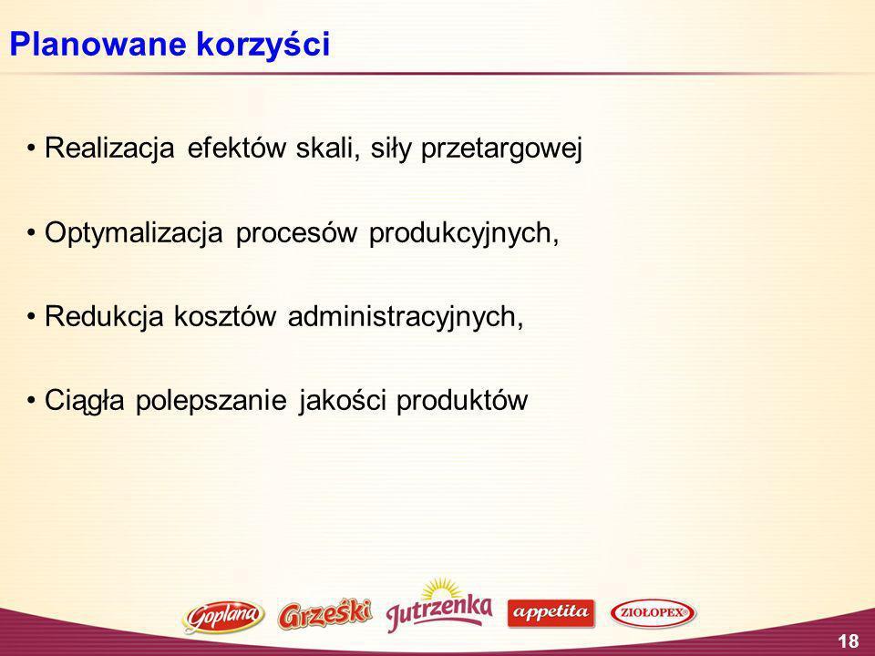 18 Planowane korzyści Realizacja efektów skali, siły przetargowej Optymalizacja procesów produkcyjnych, Redukcja kosztów administracyjnych, Ciągła pol