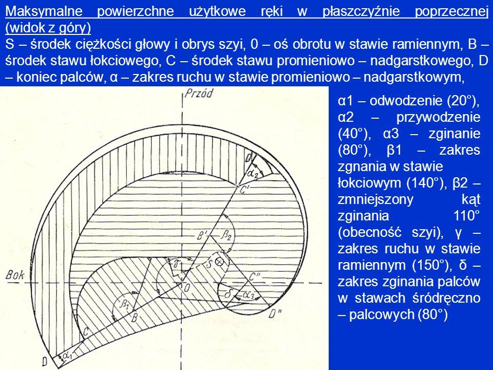 Maksymalne powierzchne użytkowe ręki w płaszczyźnie poprzecznej (widok z góry) S – środek ciężkości głowy i obrys szyi, 0 – oś obrotu w stawie ramienn
