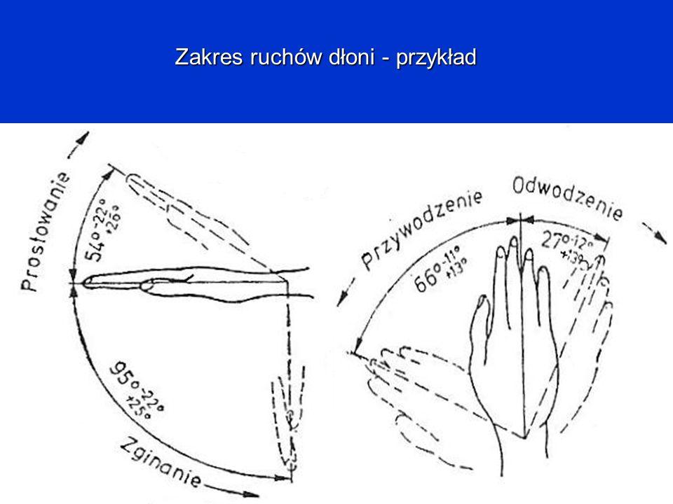 Zakres ruchów dłoni - przykład