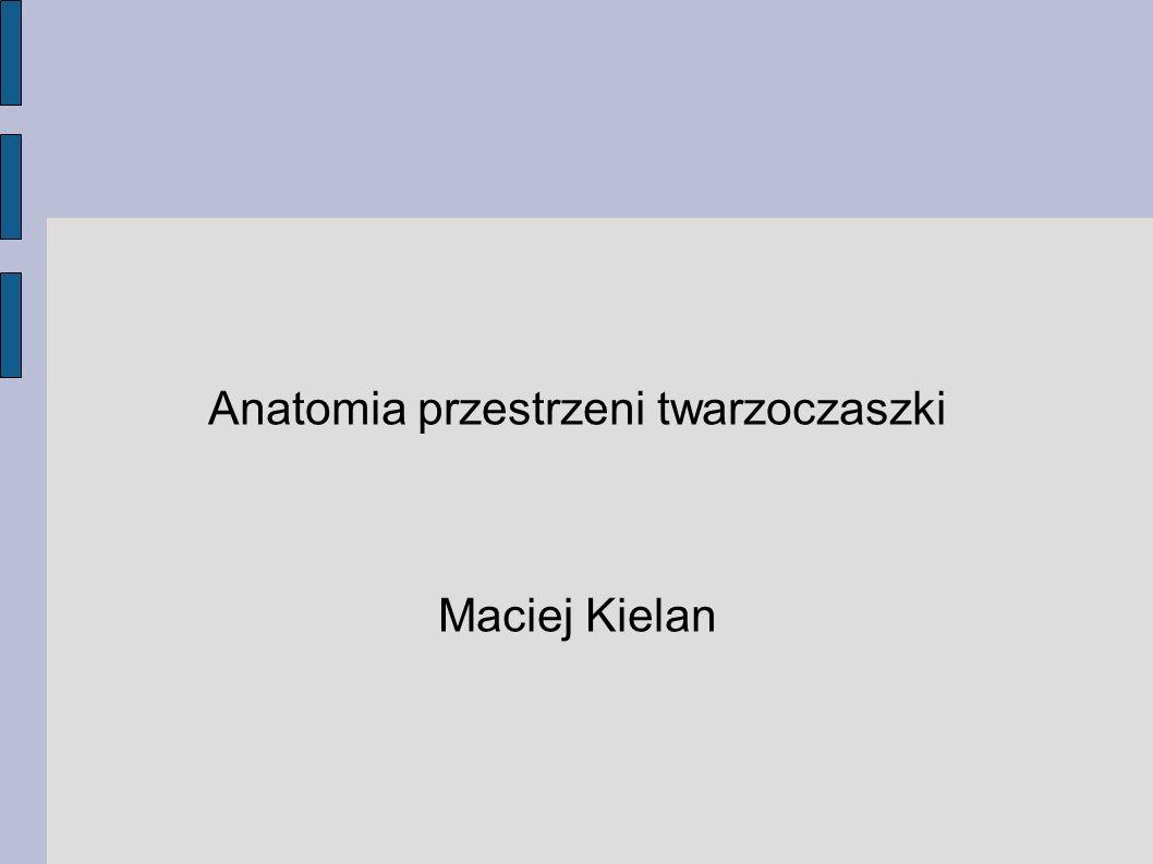 Anatomia przestrzeni twarzoczaszki Maciej Kielan