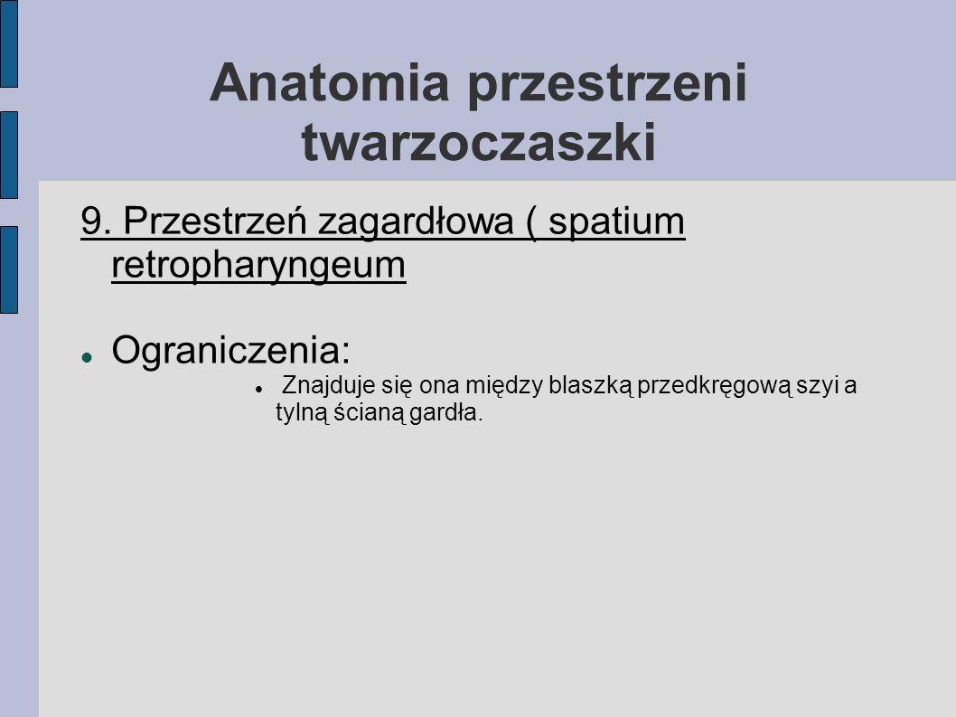 Anatomia przestrzeni twarzoczaszki 9. Przestrzeń zagardłowa ( spatium retropharyngeum Ograniczenia: Znajduje się ona między blaszką przedkręgową szyi