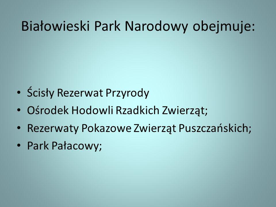 Białowieski Park Narodowy obejmuje: Ścisły Rezerwat Przyrody Ośrodek Hodowli Rzadkich Zwierząt; Rezerwaty Pokazowe Zwierząt Puszczańskich; Park Pałaco