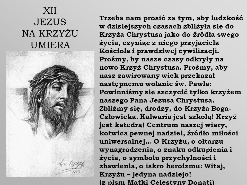 Trzeba nam prosić za tym, aby ludzkość w dzisiejszych czasach zbliżyła się do Krzyża Chrystusa jako do źródła swego życia, czyniąc z niego przyjaciela