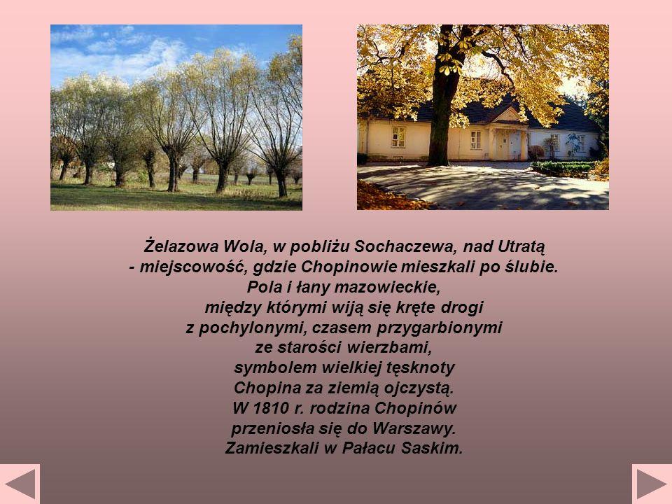 Żelazowa Wola, w pobliżu Sochaczewa, nad Utratą - miejscowość, gdzie Chopinowie mieszkali po ślubie. Pola i łany mazowieckie, między którymi wiją się