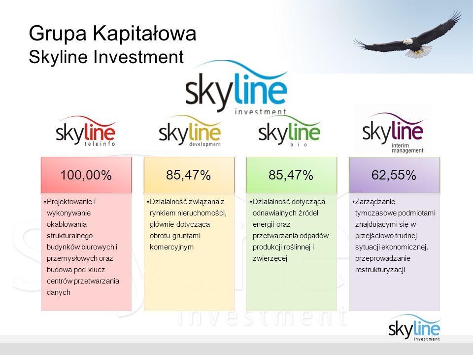 Grupa Kapitałowa Skyline Investment 100,00% Projektowanie i wykonywanie okablowania strukturalnego budynków biurowych i przemysłowych oraz budowa pod klucz centrów przetwarzania danych 85,47% Działalność związana z rynkiem nieruchomości, głównie dotycząca obrotu gruntami komercyjnym 85,47% Działalność dotycząca odnawialnych źródeł energii oraz przetwarzania odpadów produkcji roślinnej i zwierzęcej 62,55% Zarządzanie tymczasowe podmiotami znajdującymi się w przejściowo trudnej sytuacji ekonomicznej, przeprowadzanie restrukturyzacji
