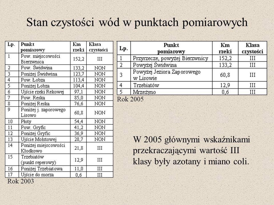 Stan czystości wód w punktach pomiarowych Rok 2003 Rok 2005 W 2005 głównymi wskaźnikami przekraczającymi wartość III klasy były azotany i miano coli.