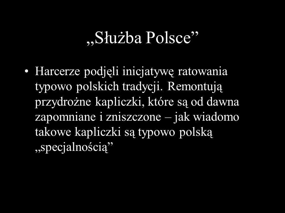Służba Polsce Harcerze podjęli inicjatywę ratowania typowo polskich tradycji. Remontują przydrożne kapliczki, które są od dawna zapomniane i zniszczon