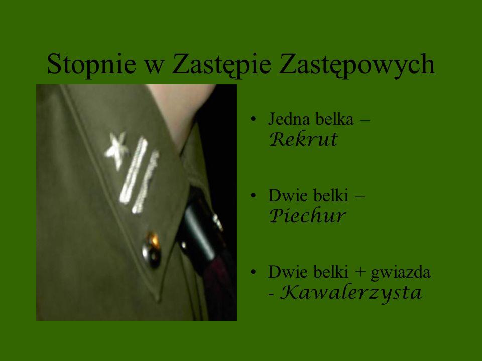 Stopnie w Zastępie Zastępowych Jedna belka – Rekrut Dwie belki – Piechur Dwie belki + gwiazda - Kawalerzysta
