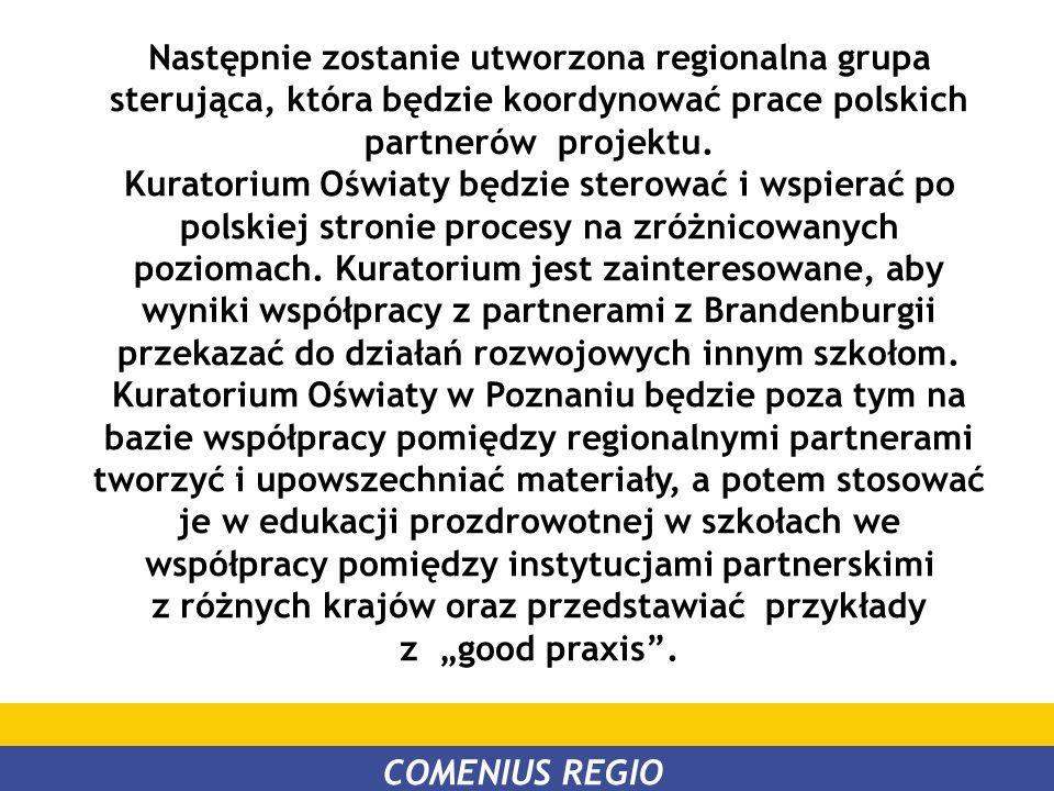 Następnie zostanie utworzona regionalna grupa sterująca, która będzie koordynować prace polskich partnerów projektu. Kuratorium Oświaty będzie sterowa