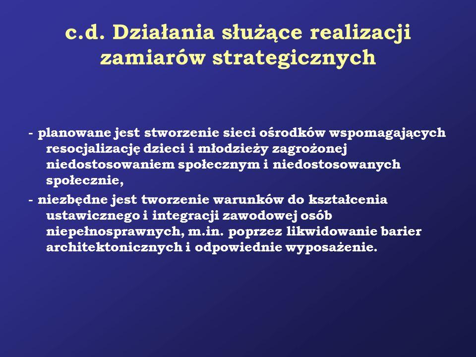 c.d. Działania służące realizacji zamiarów strategicznych - planowane jest stworzenie sieci ośrodków wspomagających resocjalizację dzieci i młodzieży