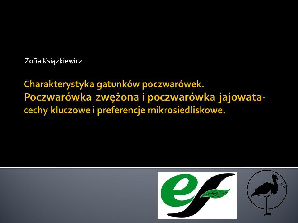 Zofia Książkiewicz