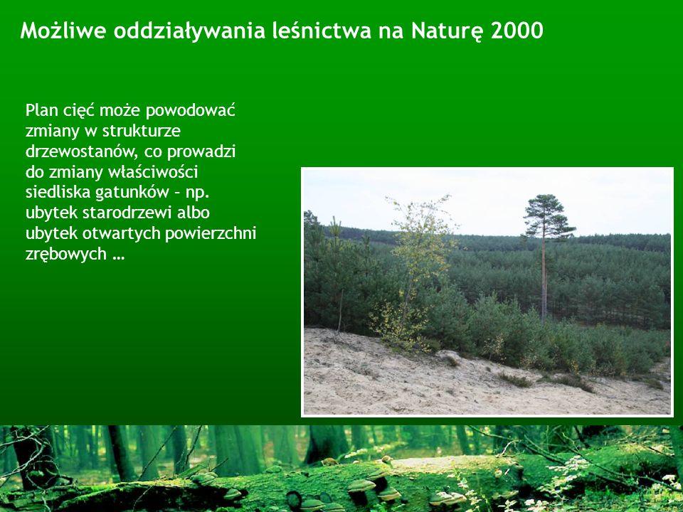 Możliwe oddziaływania leśnictwa na Naturę 2000 Plan cięć może powodować zmiany w strukturze drzewostanów, co prowadzi do zmiany właściwości siedliska