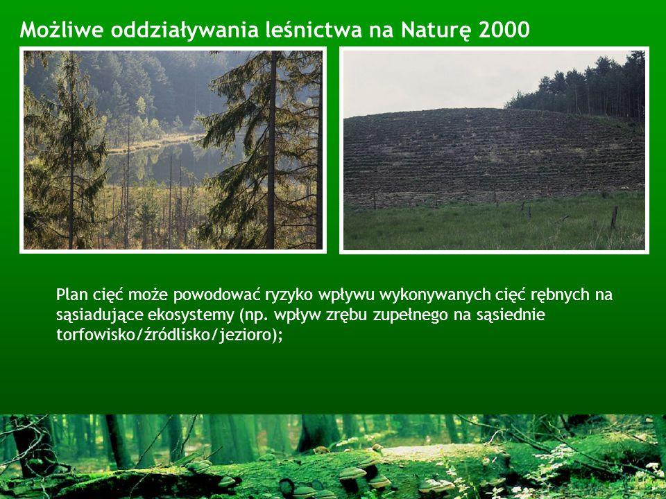 Możliwe oddziaływania leśnictwa na Naturę 2000 Plan cięć może powodować ryzyko wpływu wykonywanych cięć rębnych na sąsiadujące ekosystemy (np. wpływ z