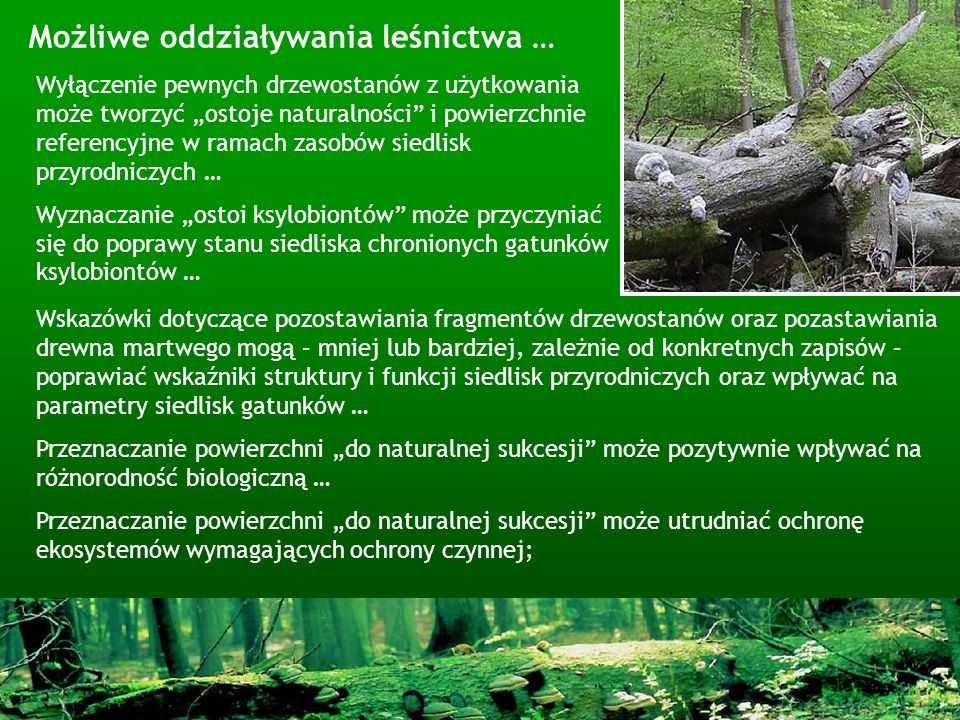 Wyłączenie pewnych drzewostanów z użytkowania może tworzyć ostoje naturalności i powierzchnie referencyjne w ramach zasobów siedlisk przyrodniczych …