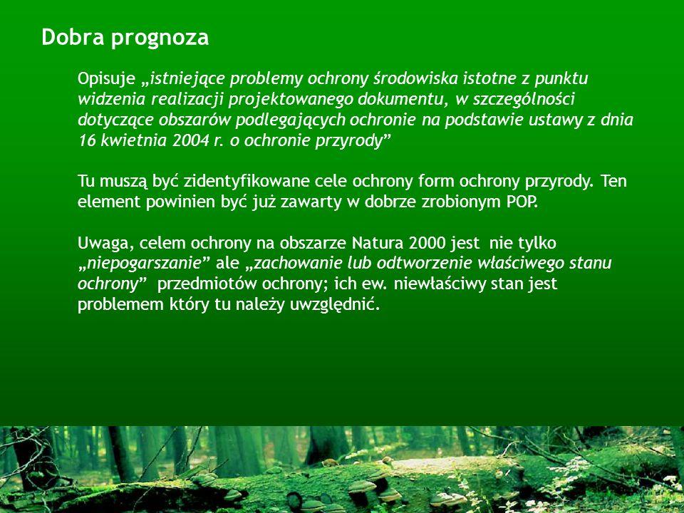 Dobra prognoza Opisuje istniejące problemy ochrony środowiska istotne z punktu widzenia realizacji projektowanego dokumentu, w szczególności dotyczące