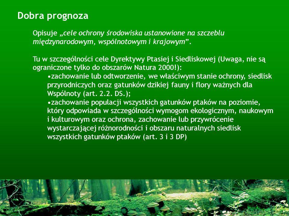 Dobra prognoza Opisuje cele ochrony środowiska ustanowione na szczeblu międzynarodowym, wspólnotowym i krajowym. Tu w szczególności cele Dyrektywy Pta