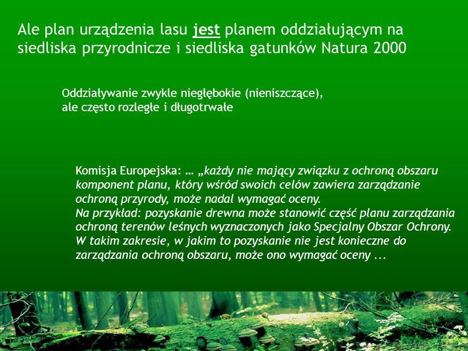 Ale plan urządzenia lasu jest planem oddziałującym na siedliska przyrodnicze i siedliska gatunków Natura 2000 Komisja Europejska: … każdy nie mający z