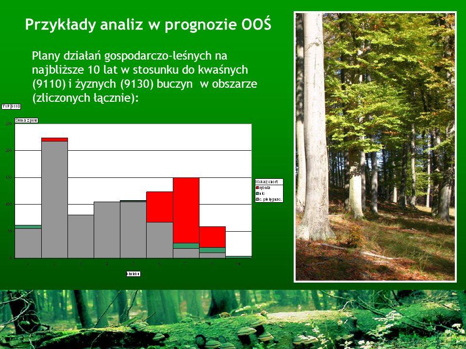 Plany działań gospodarczo-leśnych na najbliższe 10 lat w stosunku do kwaśnych (9110) i żyznych (9130) buczyn w obszarze (zliczonych łącznie):