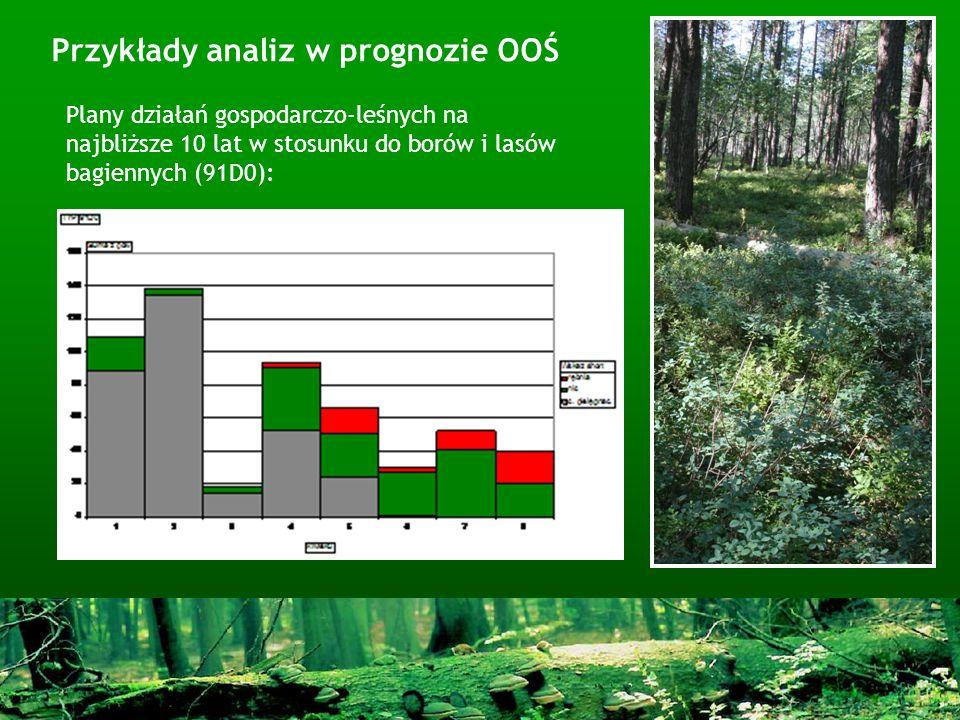 Przykłady analiz w prognozie OOŚ Plany działań gospodarczo-leśnych na najbliższe 10 lat w stosunku do borów i lasów bagiennych (91D0):